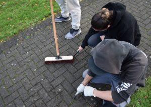 Jugendlich leisten Sozialstunden auf dem Erbacher Berg ab.