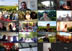 Der virtuelle Weinsommer. Foto: Screenshot